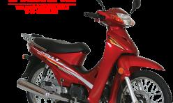 TIGRINA S100